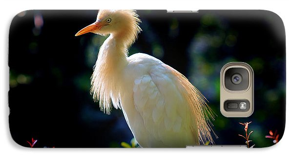 Egret With Back Lighting Galaxy Case by Zoe Ferrie