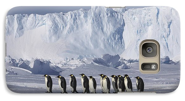 Emperor Penguins Walking Antarctica Galaxy S7 Case by Frederique Olivier