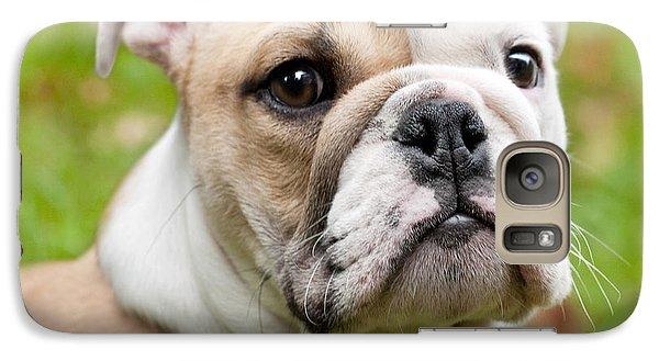 English Bulldog Puppy Galaxy Case by Natalie Kinnear