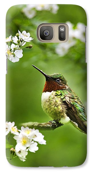 Fauna And Flora - Hummingbird With Flowers Galaxy Case by Christina Rollo