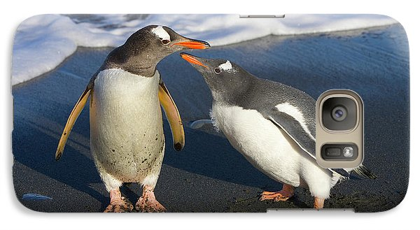 Gentoo Penguin Chick Begging For Food Galaxy Case by Yva Momatiuk and John Eastcott
