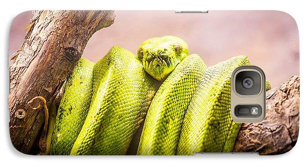 Green Tree Python Galaxy Case by Pati Photography