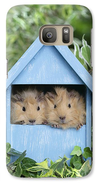 Guinea Pig In House Gp104 Galaxy S7 Case by Greg Cuddiford