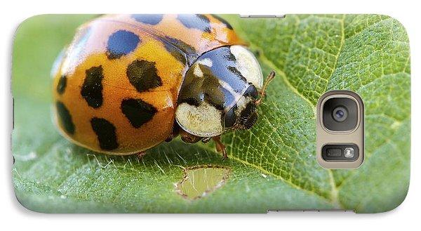 Harlequin Ladybird Galaxy S7 Case by Heath Mcdonald
