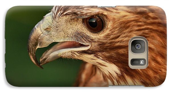 Hawk Eyes Galaxy Case by Dan Sproul