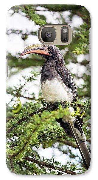 Hemprichs's Hornbill (tockus Hemprichii) Galaxy Case by Peter J. Raymond