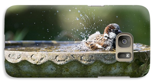 House Sparrow Washing Galaxy S7 Case by Tim Gainey