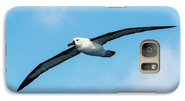 Indian Ocean Yellow-nosed Albatross Galaxy Case by Peter Chadwick