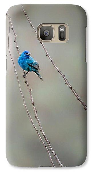Indigo Bunting Galaxy S7 Case by Bill Wakeley