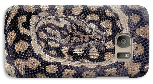Inland Carpet Python  Galaxy Case by Karl H Switak