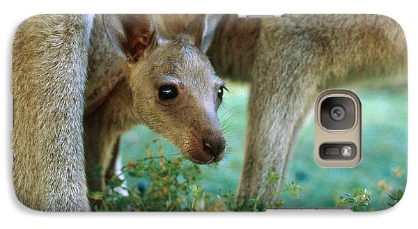 Kangaroo Joey Galaxy Case by Mark Newman