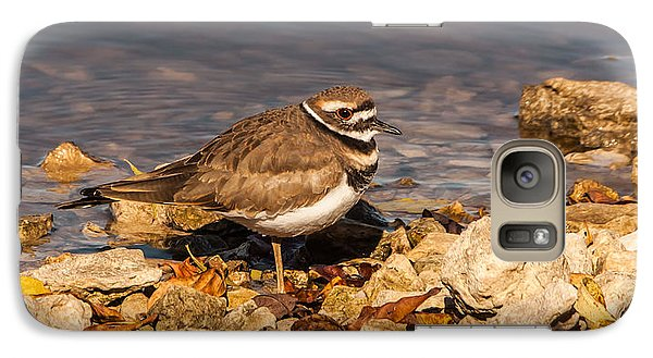 Kildeer On The Rocks Galaxy Case by Robert Frederick