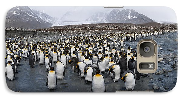 King Penguins Aptenodytes Patagonicus Galaxy Case by Panoramic Images