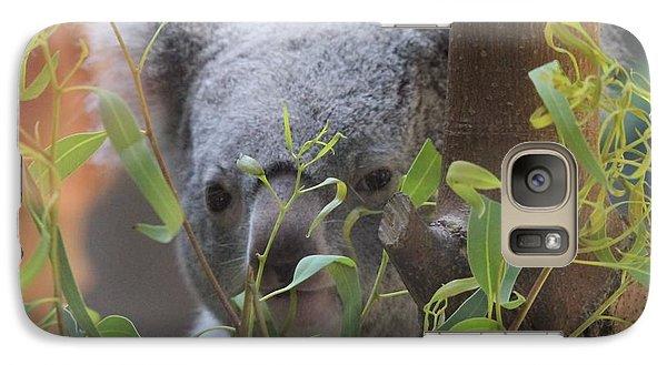 Koala Bear  Galaxy S7 Case by Dan Sproul