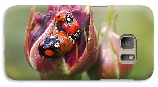 Ladybug Foursome Galaxy Case by Rona Black
