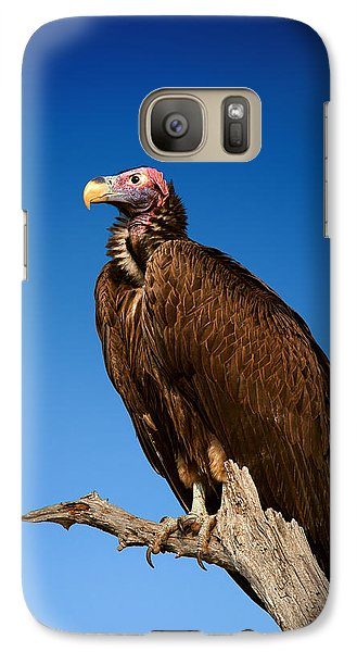 Lappetfaced Vulture Against Blue Sky Galaxy Case by Johan Swanepoel