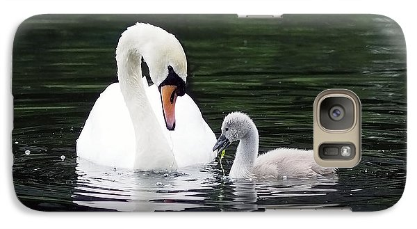 Lunchtime For Swan And Cygnet Galaxy Case by Rona Black
