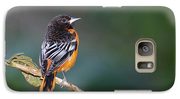 Male Baltimore Oriole, Icterus Galbula Galaxy Case by Thomas Wiewandt