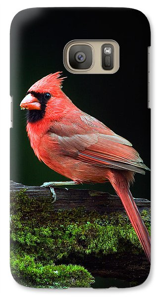 Male Northern Cardinal Cardinalis Galaxy S7 Case by Panoramic Images