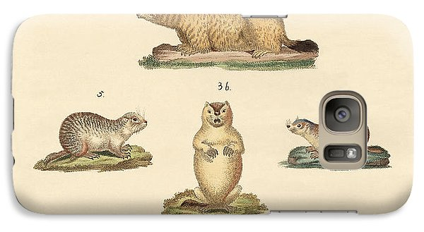 Marmots And Moles Galaxy Case by Splendid Art Prints
