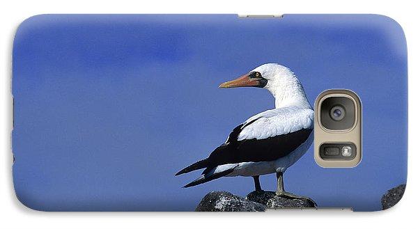 Masked Booby Bird Galaxy Case by Thomas Wiewandt