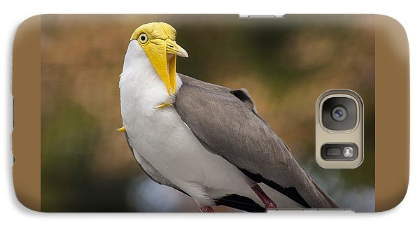Masked Lapwing Galaxy S7 Case by Carolyn Marshall