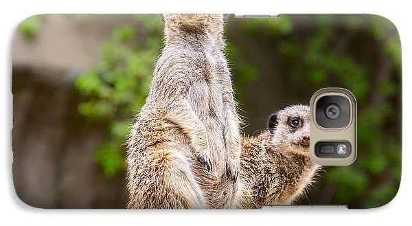 Meerkat Pair Galaxy S7 Case by Jamie Pham