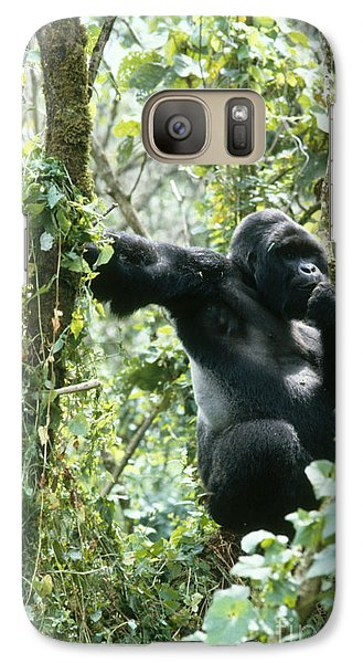 Mountain Gorilla Galaxy Case by Tierbild Okapia