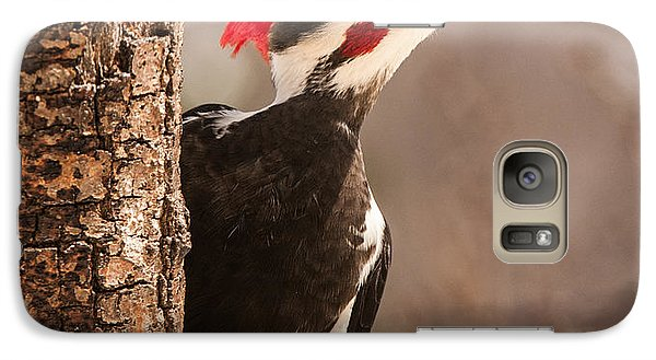 Mr. Pileated Galaxy S7 Case by Lara Ellis
