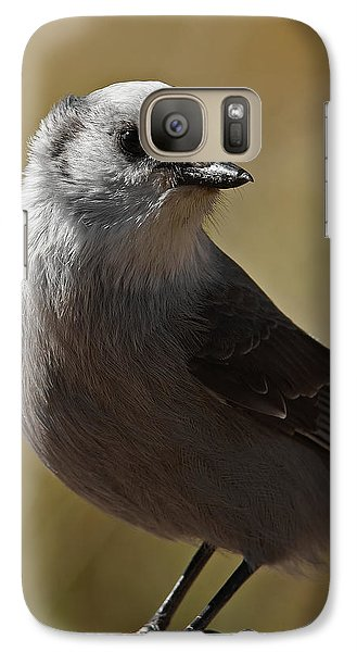 Northern Mockingbird Galaxy S7 Case by Ernie Echols