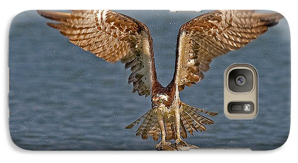 Osprey Morning Catch Galaxy Case by Susan Candelario