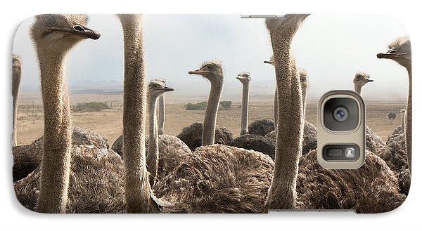 Ostrich Heads Galaxy Case by Johan Swanepoel