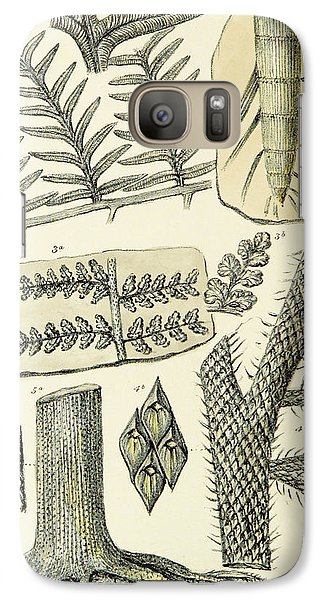 Galaxy Case featuring the photograph Paleozoic Flora, Calamites, Illustration by British Library