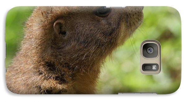 Prairie Dog Portrait Galaxy S7 Case by Dan Sproul