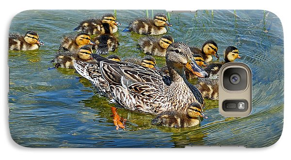 Galaxy Case featuring the photograph Proud Mother by Rodney Campbell
