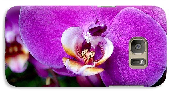 Purple Orchid Galaxy Case by Rona Black