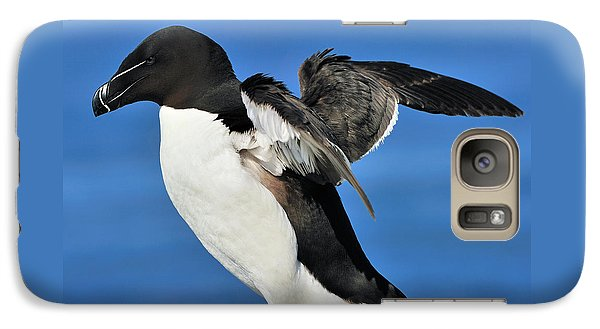 Razorbill Galaxy Case by Tony Beck