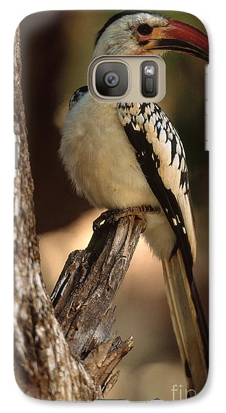 Red-billed Hornbill Galaxy S7 Case by Art Wolfe