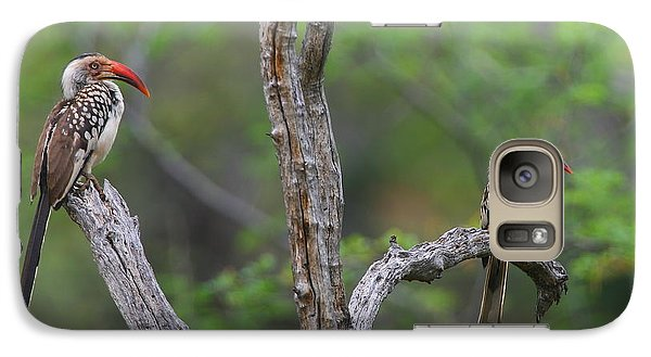 Red-billed Hornbills Galaxy S7 Case by Bruce J Robinson