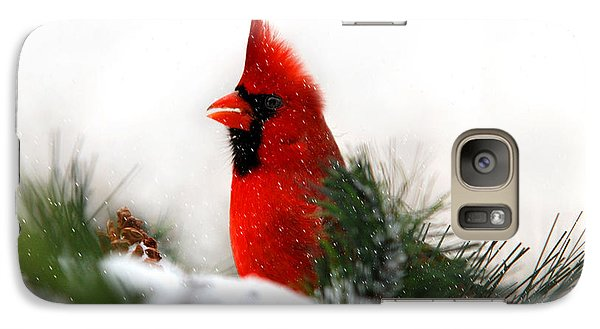Red Cardinal Galaxy Case by Christina Rollo
