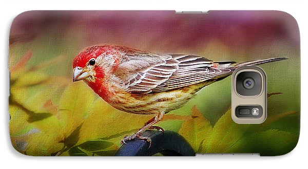 Red Finch Galaxy S7 Case by Darren Fisher