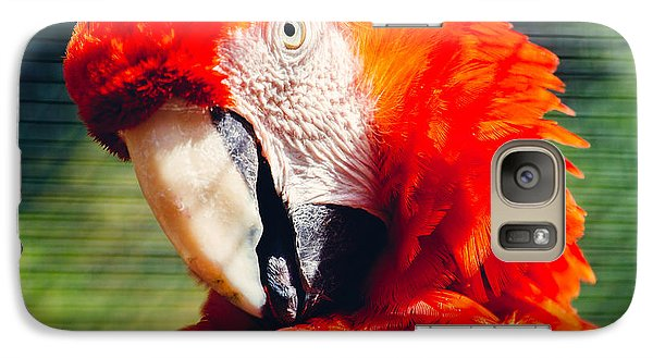 Red Macaw Closeup Galaxy S7 Case by Pati Photography