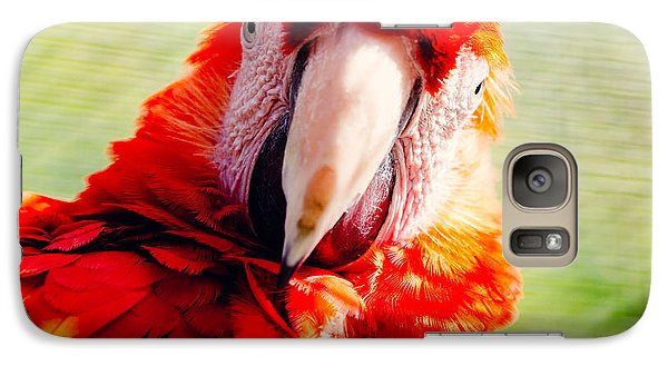 Red Macaw Galaxy S7 Case by Pati Photography