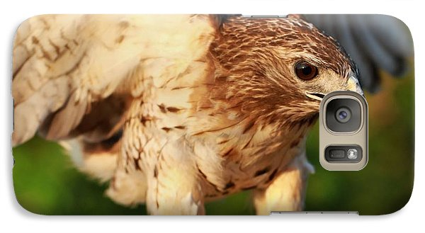 Red Tailed Hawk Hunting Galaxy Case by Dan Sproul