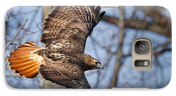 Redtail Hawk Galaxy Case by Bill Wakeley
