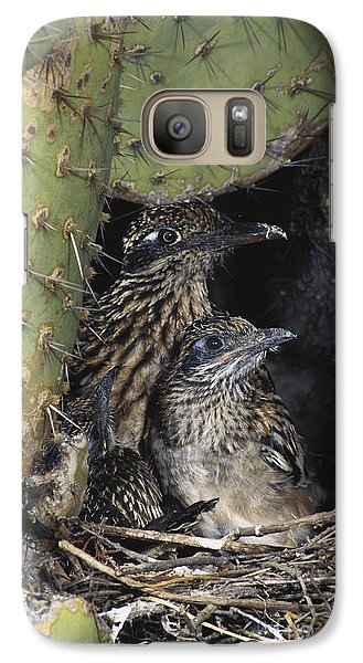 Roadrunners In Nest Galaxy Case by Anthony Mercieca