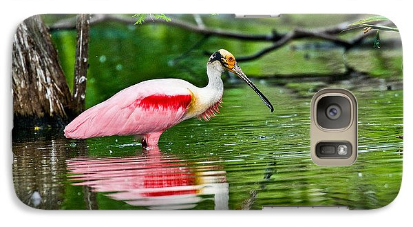 Roseate Spoonbill Wading Galaxy S7 Case by Anthony Mercieca