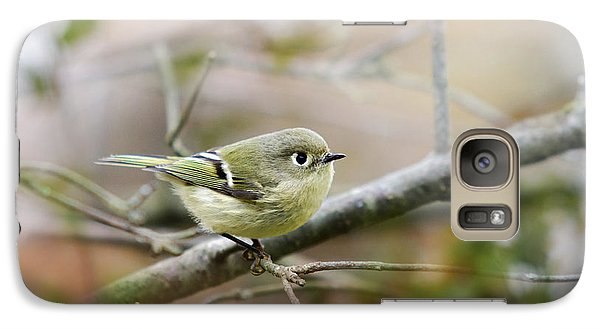 Ruby-crowned Kinglet Galaxy S7 Case by Christina Rollo