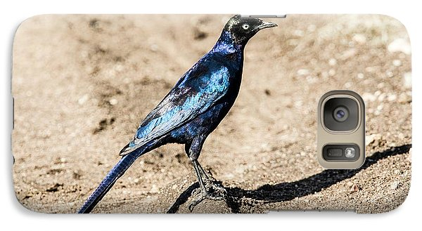 Ruppell's Glossy-starling Galaxy Case by Photostock-israel
