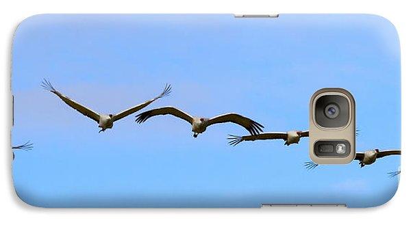 Sandhill Crane Flight Pattern Galaxy S7 Case by Mike Dawson